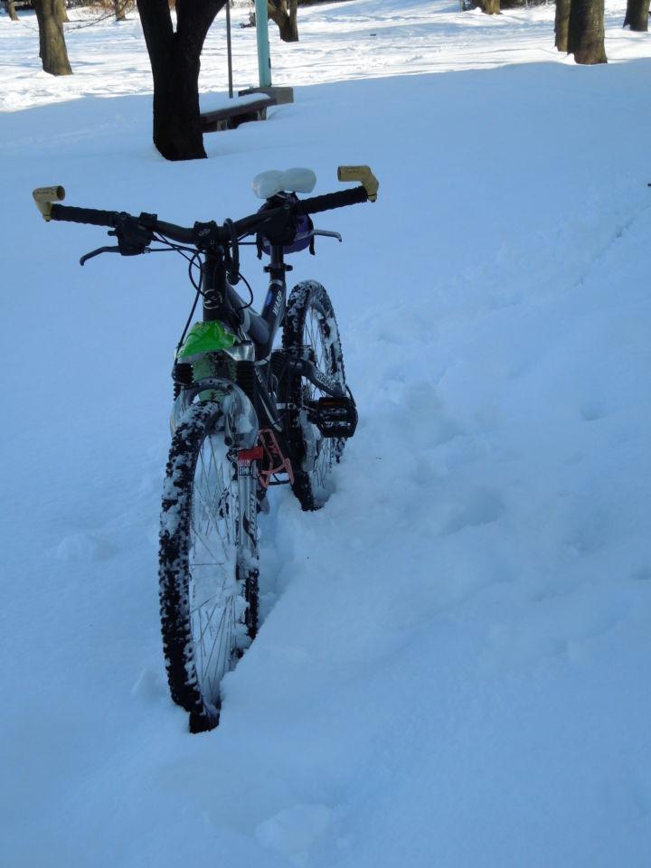 ... の雪道を走る | シクロライダー