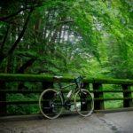 クロスバイクの違いを考える ルイガノ・シャッセ編