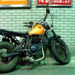サイクルベースあさひのファットロングテールバイク 88CYCLEのカスタムをまとめてみた