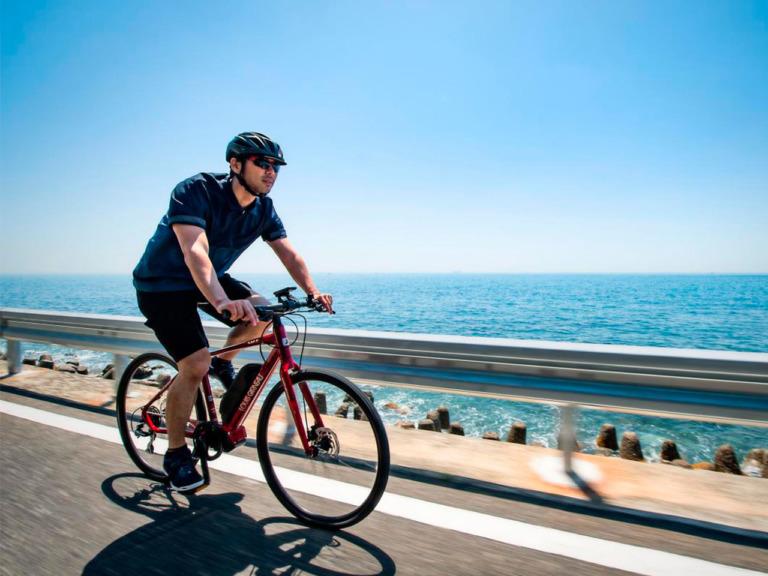 2020年モデル最新 ルイガノのEバイクをピックアップ【E-Bike辞典】